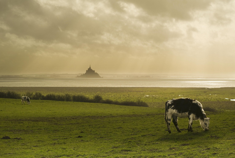 View of Mont st. Michel