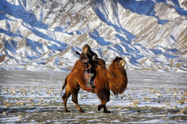 Gobi desert is both located in MOngolia and China