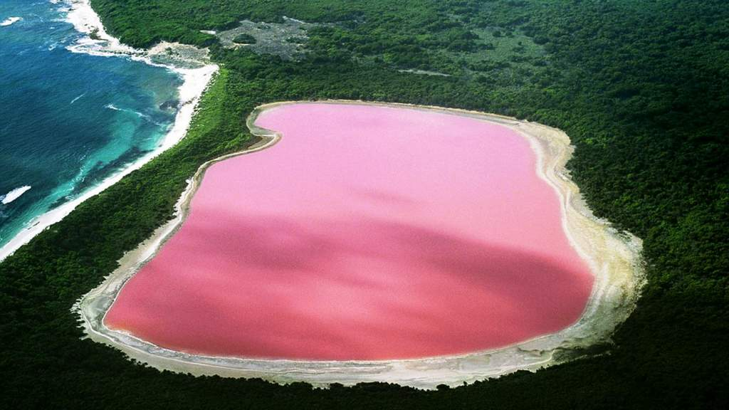 The natural bizarre pink Lake Hillier in Western Australia