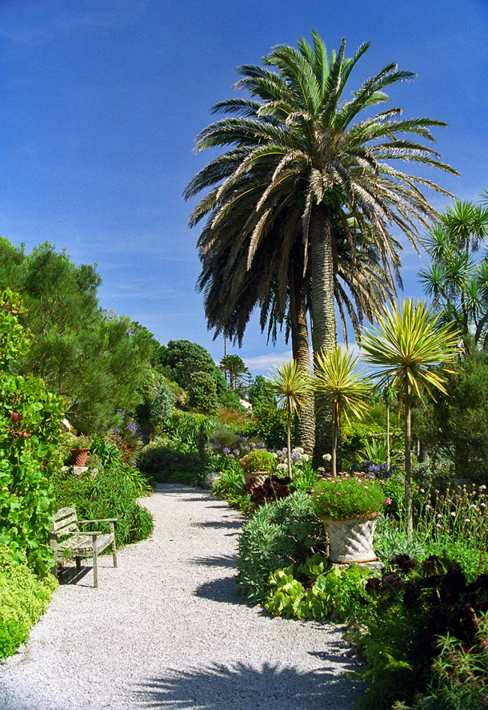 Subtropical garden, Isles of Scilly