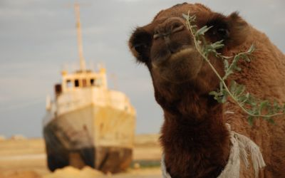 Worst Ecological Disaster: Aral Sea