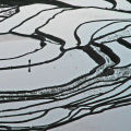 Rice terraces Yunnan