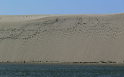 Highest moving sand dunes in Europe: The Curonian Spit System