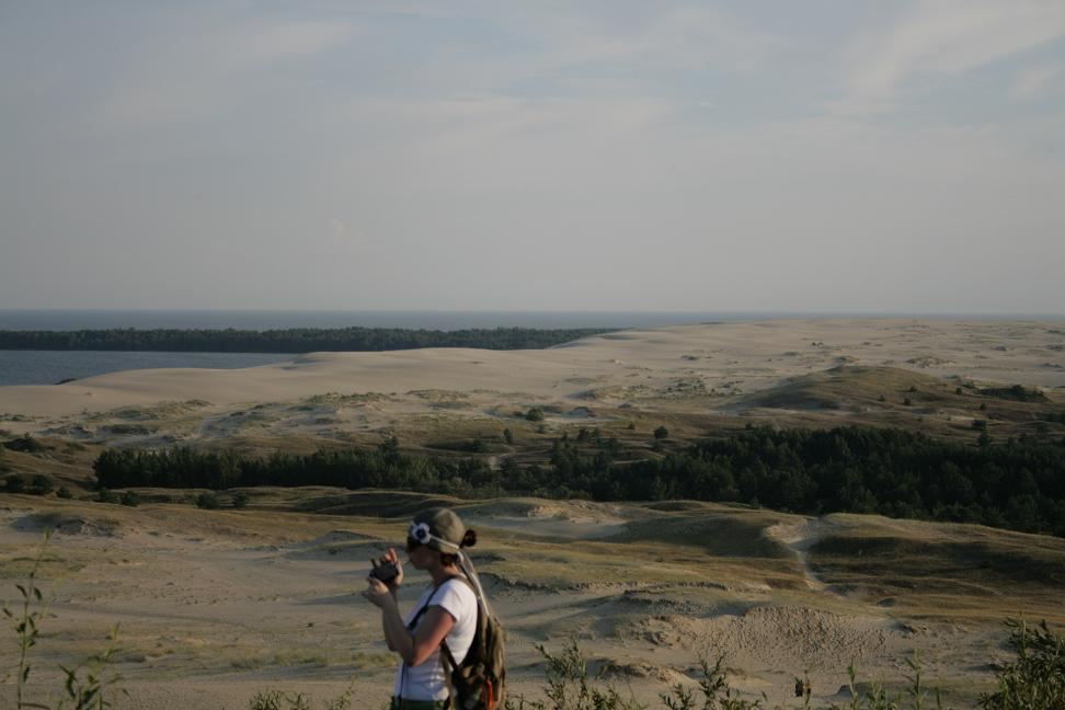 View of large sand dunes and pine forest in Curonian Spit