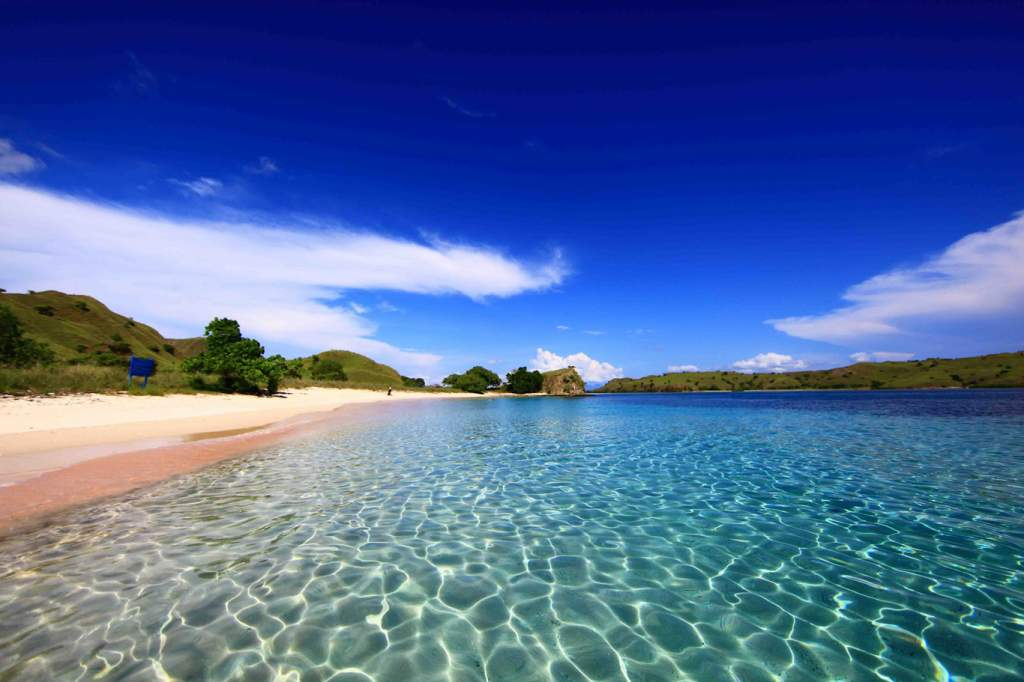 The island of Komodo is home for to pink beaches
