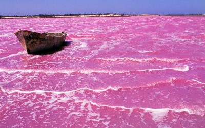 retba lake pink