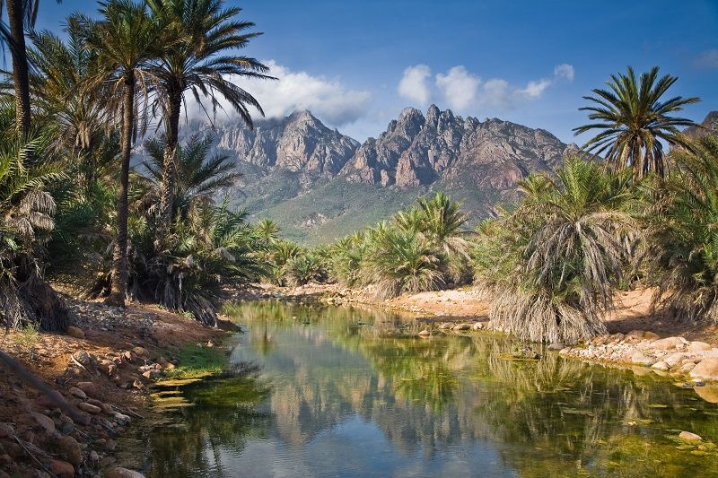 Beautiful green valley on Socotra
