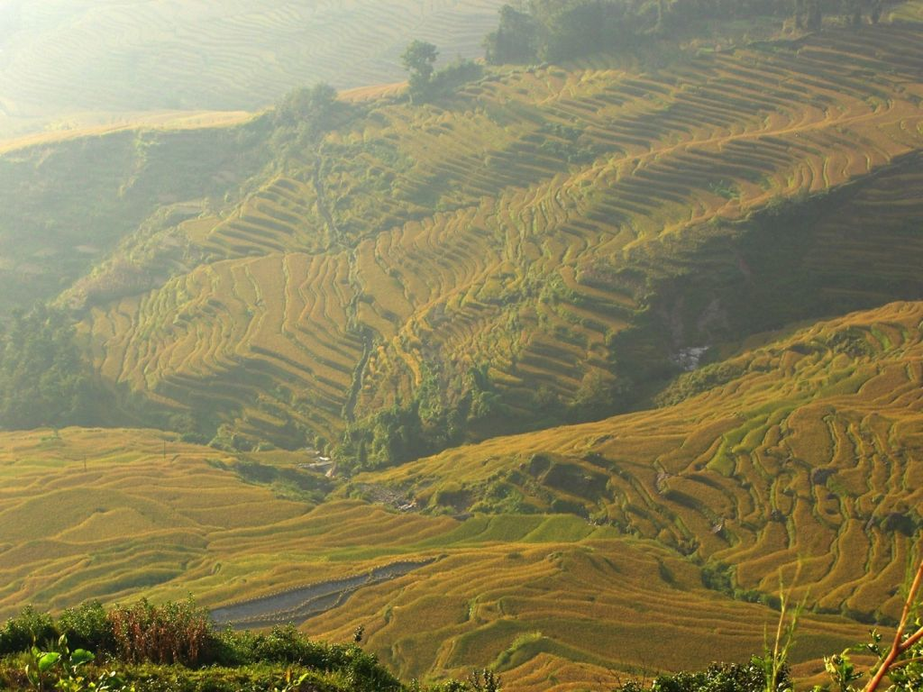 China Rice Terraces