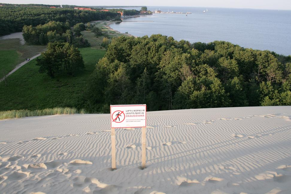Steep slope on the flank of a large sand dune in Curonian Spit National Park