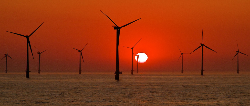 Horns Rev in the Danish part of the North Sea is one of the biggest wind farms in the world