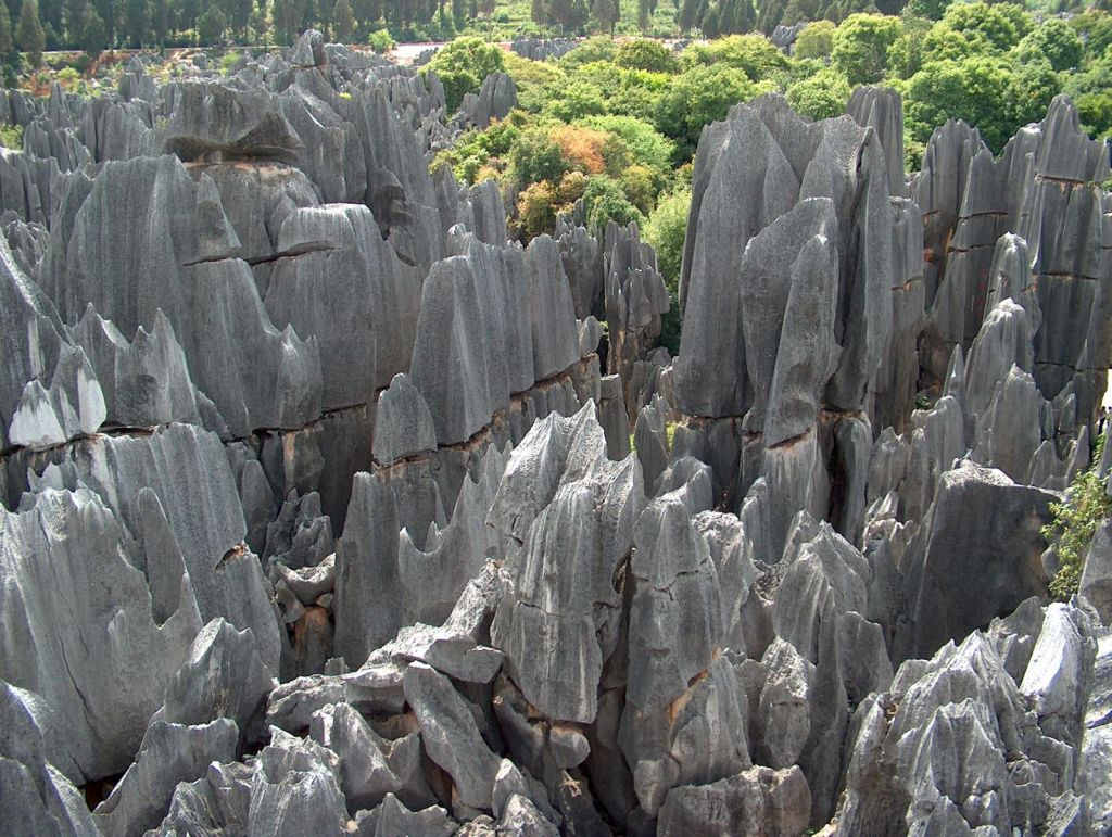 Tall rocks stone forest